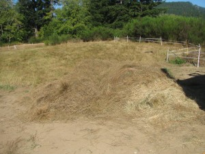An Actual Haystack, hay scythed by Sweaty People because it was faster than weedwacking.